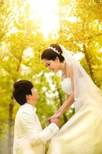 苏州蝴蝶树婚纱客照展示3