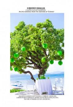 蜈支洲岛《许愿树》经典版~绿色系