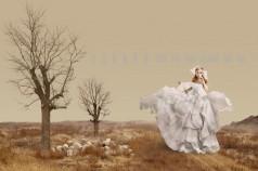 新娘造型待续