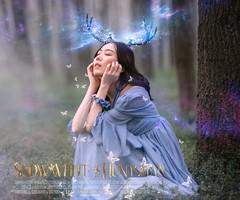 Blurred Fairyland