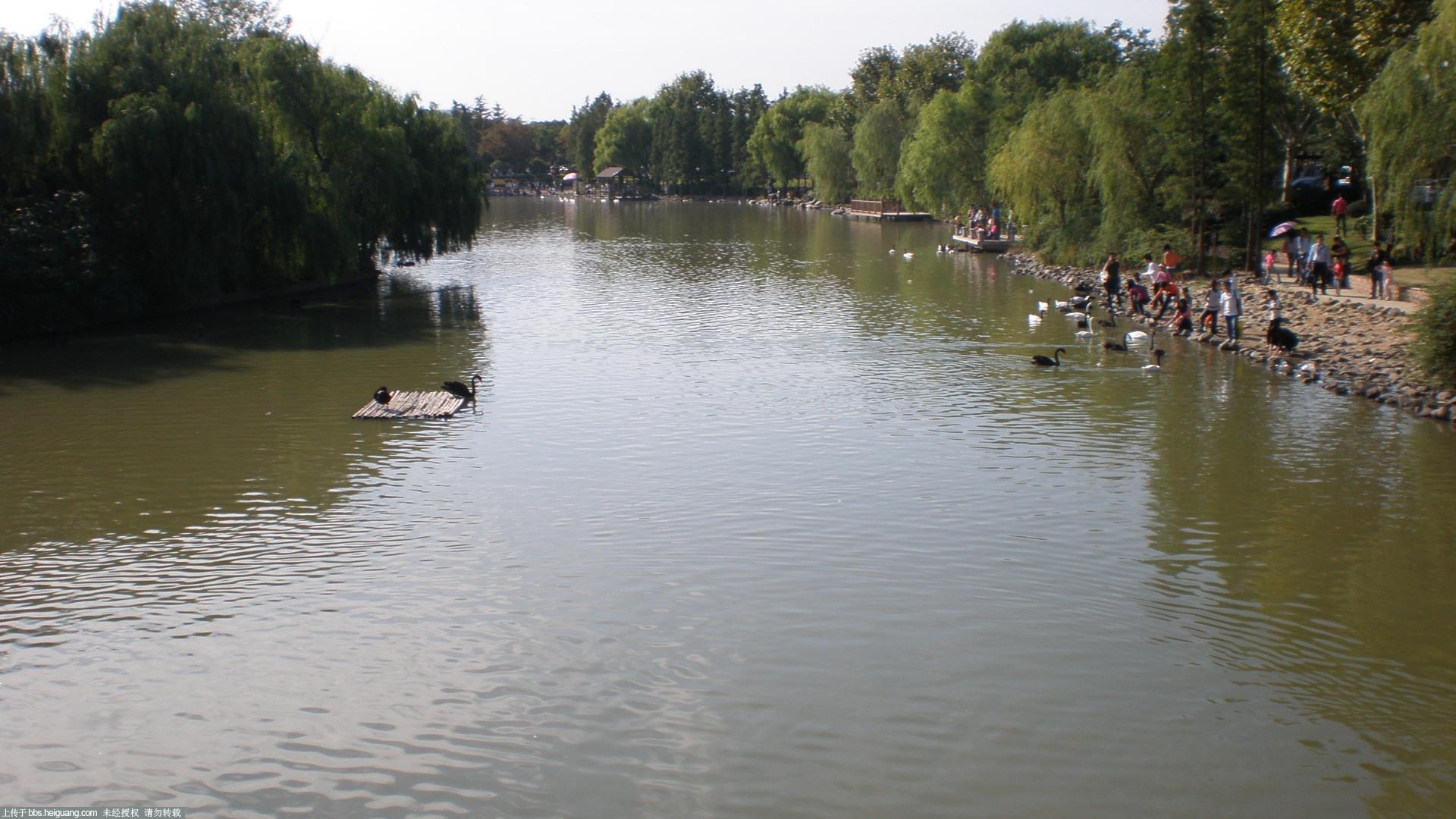 上海野生动物园写生_黑光杂谈