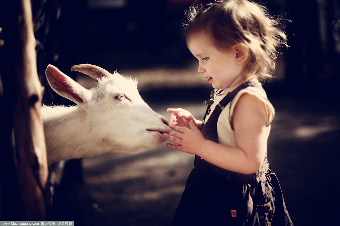 唯小孩与动物难拍也glazastik finch儿童摄影作品图片