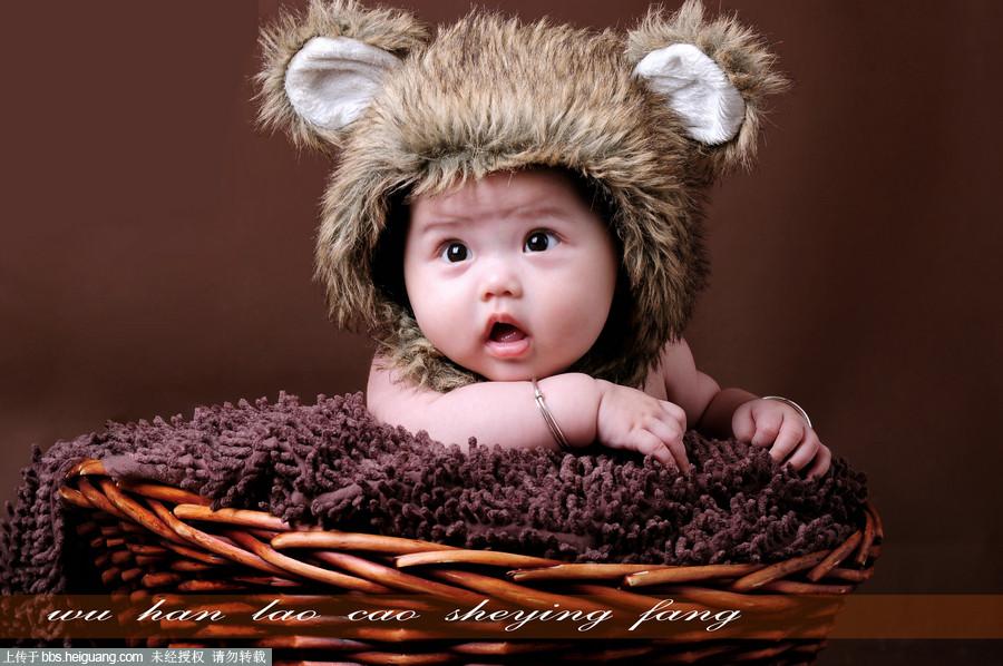 半岁小熊baby