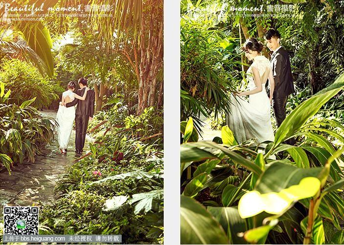 大连书音婚纱摄影之热带雨林婚纱照图片