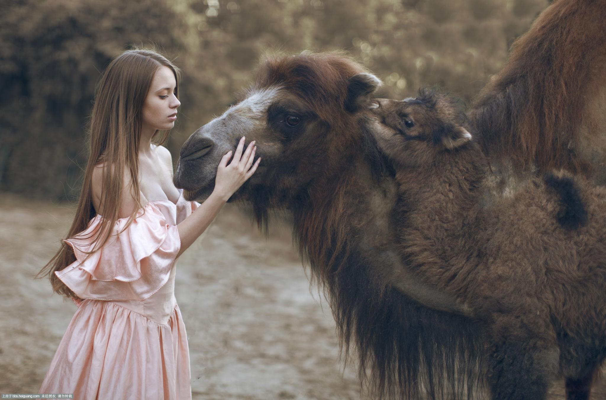 zooskool与动物 zooskool女人与猴子 zooskool人与动物图片 实时关注