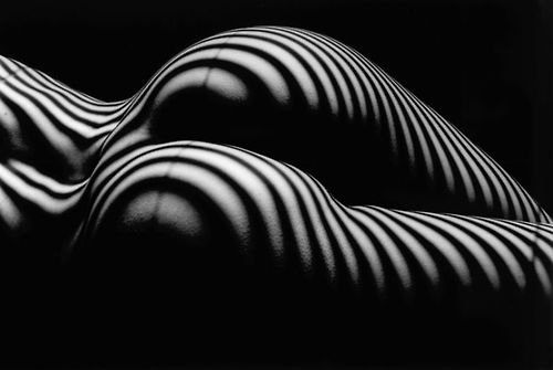 强烈的对比和直线在柔和女性身体曲线上的变化让lucien在艺术上的探索