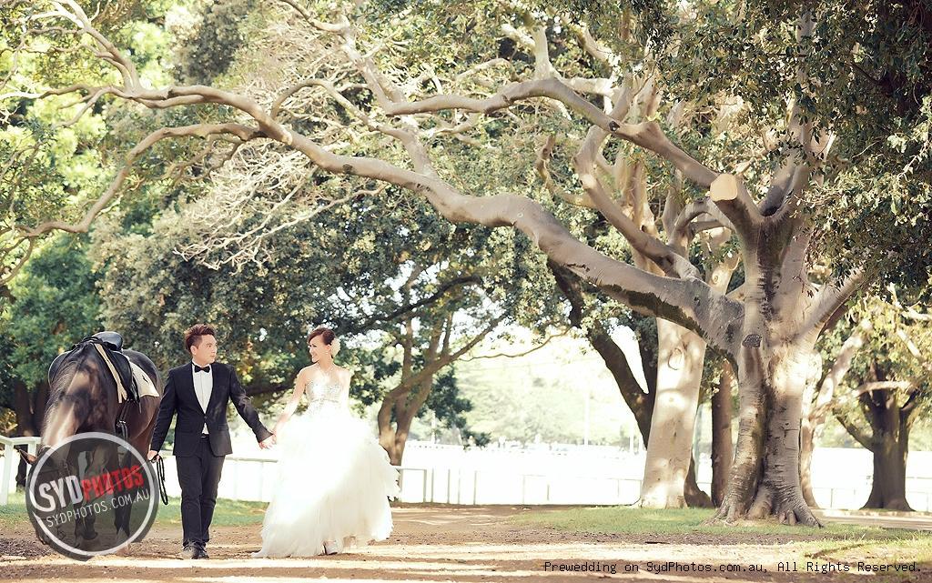 PHOTOS 骑马 Style婚照 附外景地 拍摄攻略