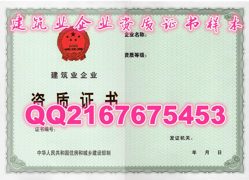 新版营业执照 餐饮服务许可证