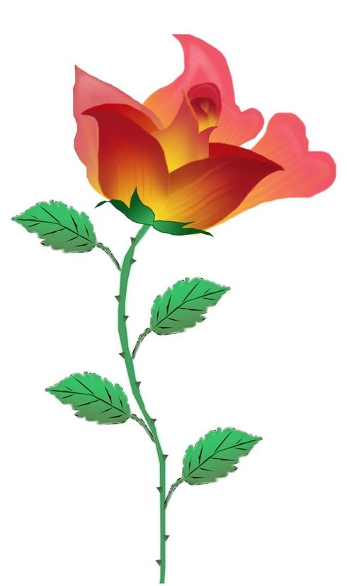 用鼠标画的一朵玫瑰花,大家评评!